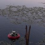 cassa galleggiante